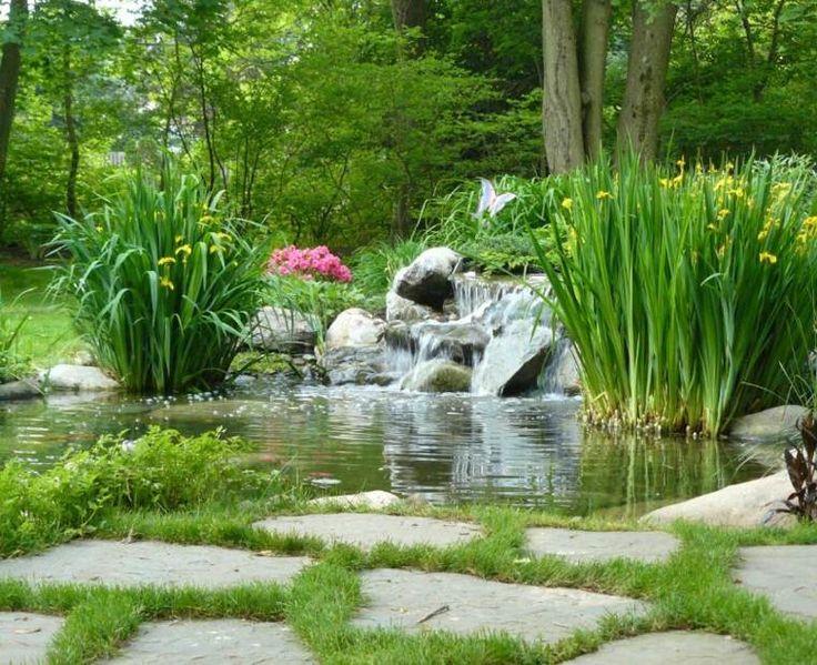 60 best jardin... jardinières etc... images on Pinterest   Gardens ...