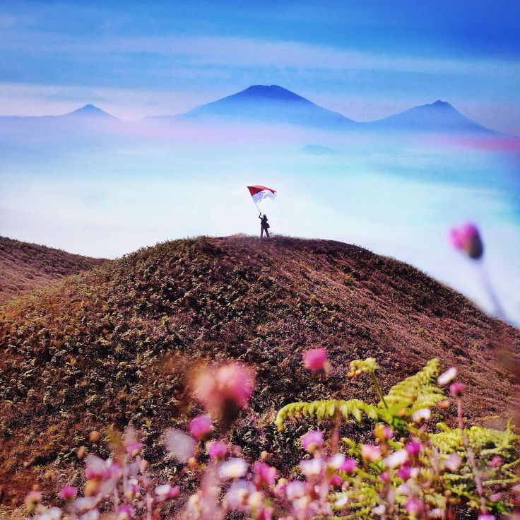 "#LIVEFOLKINDONESIA on Instagram: ""Mt. Prau - Dieng, Wonosobo. Photo by @sheanoshin #livefolkindonesia - More info about photo location, camera data, and editing process, please add our official line account: @folkindonesia (use @) or klik link on bio!"""