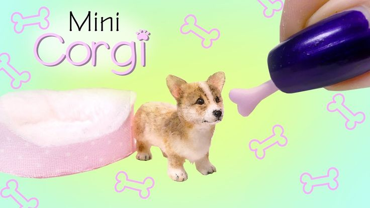 Miniature Corgi Puppy Tutorial // DIY Dolls/Dollhouse - YouTube