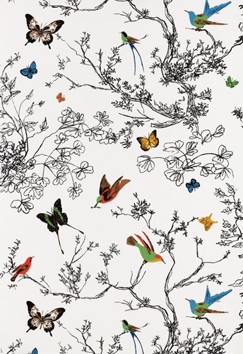 Birds and Butterflies Wallpaper by Schumacher - eclectic - wallpaper - F. Schumacher & Co.