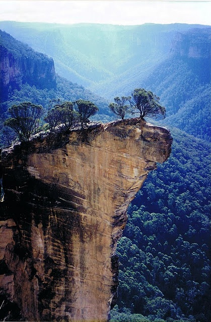 Sheer sandstone cliffs in the Blue Mountains, NSW.