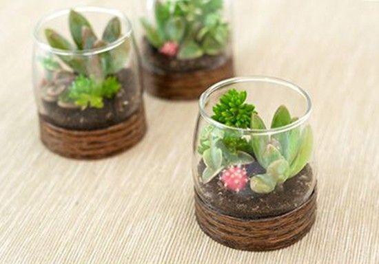 Bomboniere eco friendly terrario. Succulent terrarium for wedding favor. #wedding