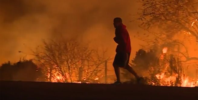 The wildfires raging along this section of a Ventura County highway didn\u0027t stop this man from saving a rabbit.