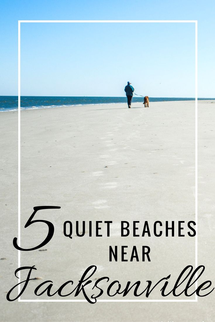 Enjoy these quiet wilderness beaches of Southern Georgia and Northern Florida- better for walking and shell searching than sunbathing