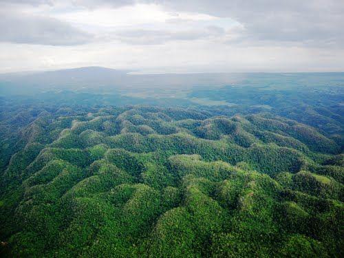 Cockpit Jungle - Karst topography