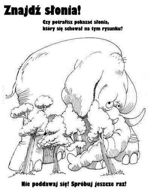 Znajdź słonia! #znajdź #słonia
