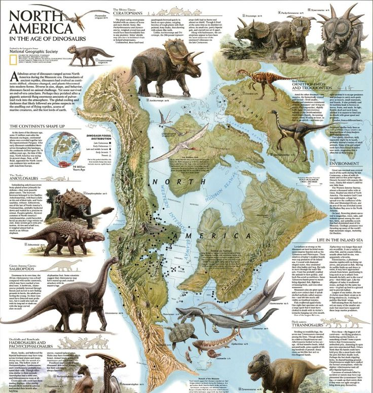 Explore North America in the Age of the Dinosaurs with