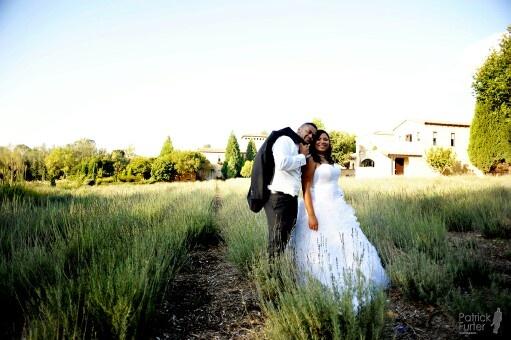 Lavender field at Avianto