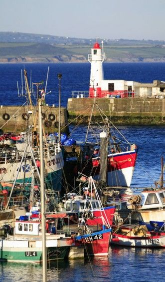 Newlyn Harbour, Cornwall, with its fishing fleet