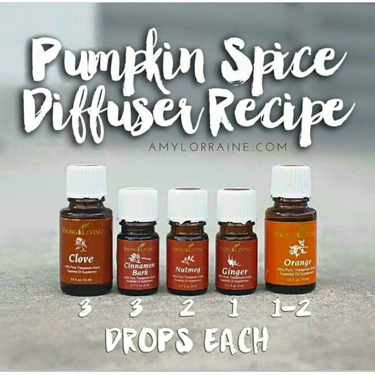 FUN FACT about the Young Living Essential Oils and oil infused products FRIDAY!  Creating a chemical-free, non-toxic home is very easy when using Young Living's THERAPEUTIC ESSENTIAL OILS like Cinnamon Bark Oil! Simply swap your favorite fall scented candles, air fresheners, and carpet deodorizers with recipes like these! Let us know if you need anything in particular! We would be happy to share with you!  https://www.facebook.com/lauraleelees.oils