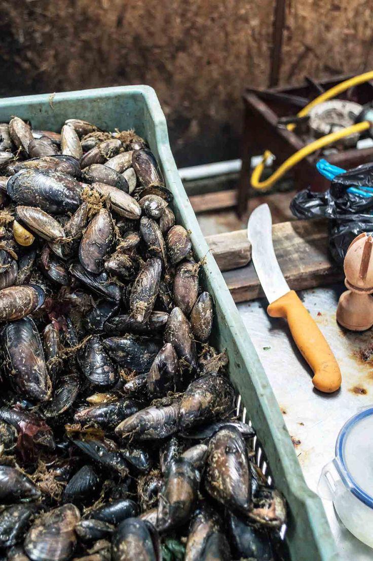 Fresh mussels at Mercado Municipal Lillo in Castro, Chiloé Island | heneedsfood.com