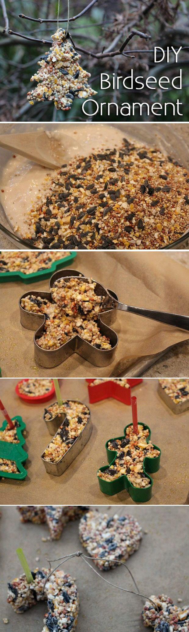 A festive craft the kids will enjoy making and the the birds will love! A homemade birdseed Christmas ornament is inexpensive and exactly what your naked, winter tree needs. http://www.ehow.com/how_4629058_make-birdseed-christmas-ornaments.html?utm_source=pinterest.com&utm_medium=referral&utm_content=blog&utm_campaign=fanpage