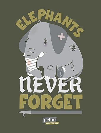 Every ticket you buy for the circus funds animal cruelty.
