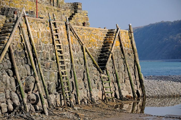 Wooden ladders at Clovelly harbour wall - England.