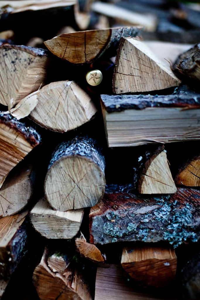 I'm not sure about blue barked wood, although it looks like it will burn