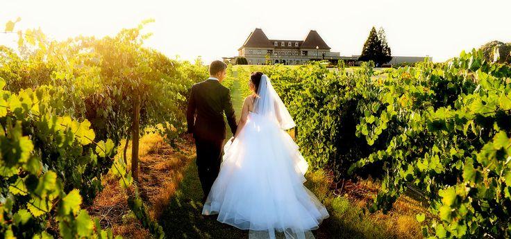 Best 25+ Tool Wedding Dresses Ideas On Pinterest