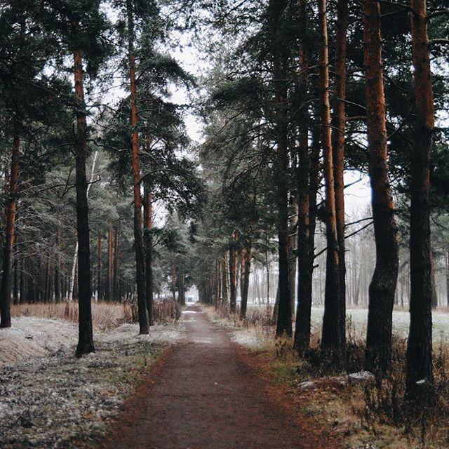 Take a walk down memory lane...