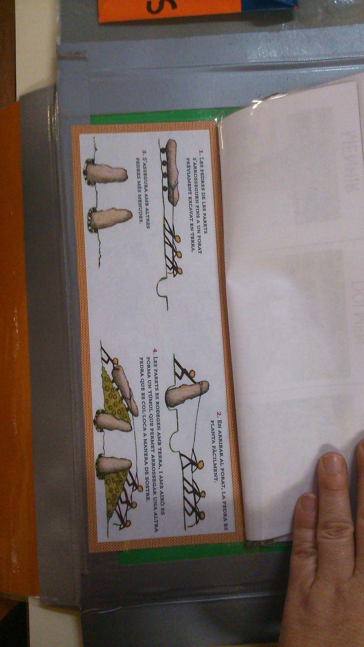 Lapbook prehistoria
