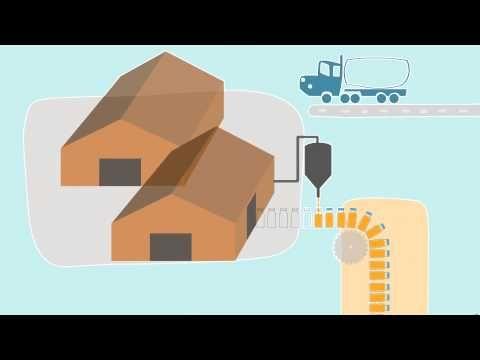Loop Scoops en Español | El Zumo de Naranja - YouTube