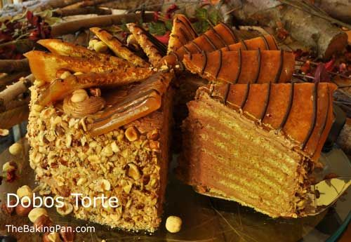 Cake Recipe | Dobos Torte Recipe