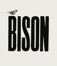 Bison--Strong, bold, authoritative
