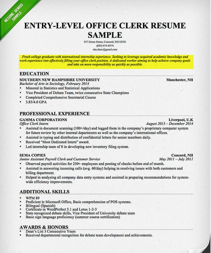 9 best Resume images on Pinterest Sample resume, Resume examples - resume goals