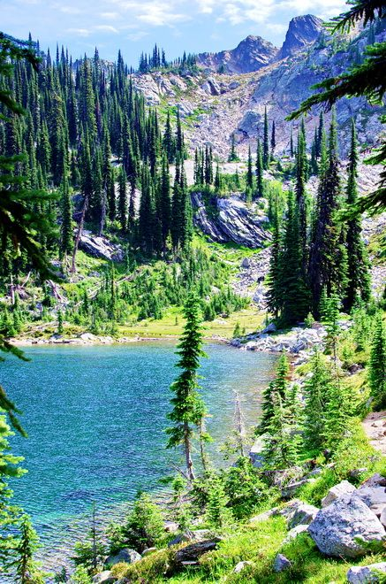 The trail around Eva Lake, Mount Revelstoke National Park, just one of 10 adventures you can do on a road trip from Vancouver to Calgary in Canada.