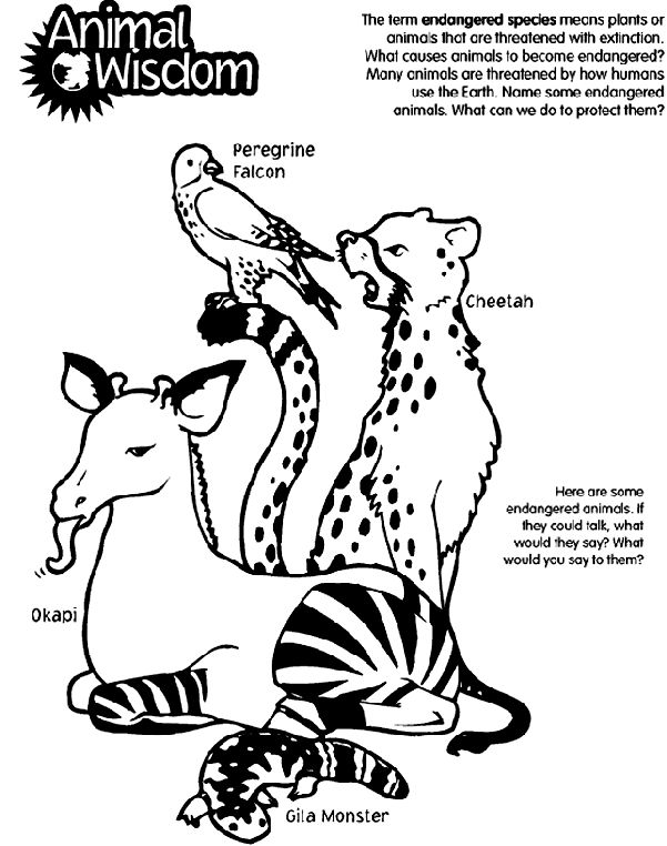Printable Coloring Pages Of Endangered Animals Coloring Pages