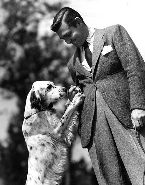 Clark Gable and his English setter. He had good taste. :) love my breed!