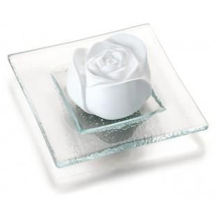 Duftstein Rosenblüte von Primavera