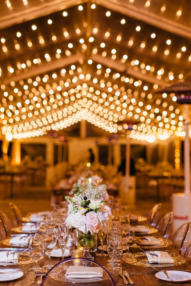 String Lights Tent Wedding : Best 25+ Clear tent ideas on Pinterest