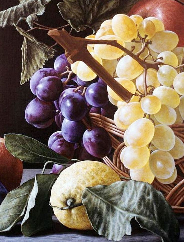 Hermosos Bodegones Realistas Pintados al Óleo Sobre Lienzo Bodegones con Frutas Pintados al Óleo Pinturas al Óleo de Bodegones Pintor Gioacchino Passini