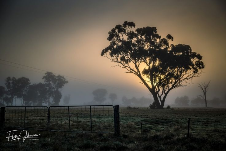 Flissy Johnson Photography – Nature, People And Landscape Photography