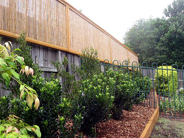 Fence extensions for privacy varendorff landscape design for Backyard patio extension ideas