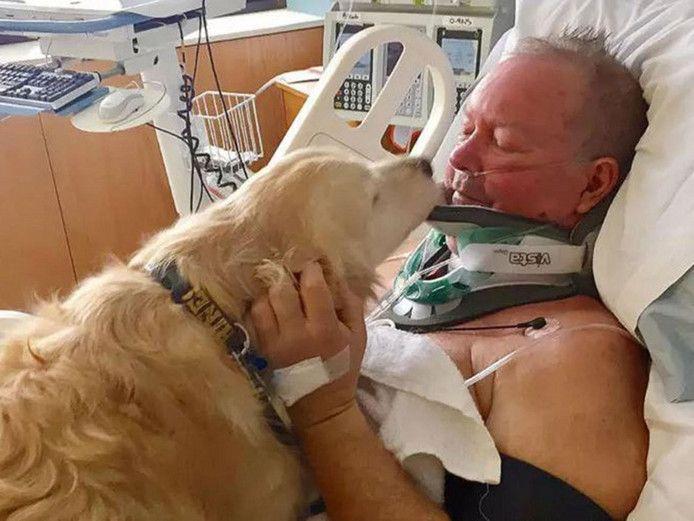 Bob, wiens familienaam niet werd bekendgemaakt, en zijn hond Kelsey. Die lag 20 uur lang bovenop haar baasje in de vrieskou.