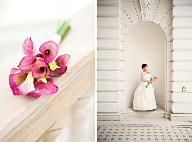 Różowe kalie/ Pink calla