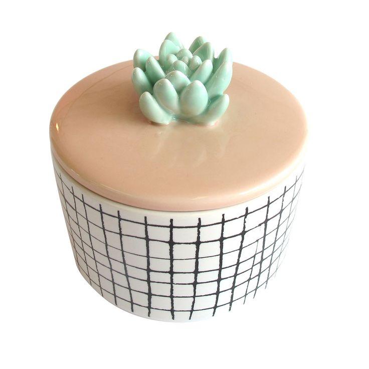 Porzellandose mit Kaktus auf dem Deckel, von Disaster ...