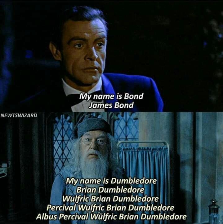 Pin By Zaida Patton On Harry Potter Funnys Harry Potter Memes Harry Potter Jokes Harry Potter Quotes