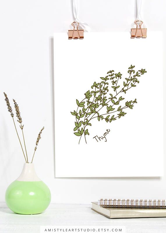 Home Decor for Her, Kitchen Print - Thyme - printable herbs wall art with a hand drawn thyme graphic artwork.This kitchen wall art printable is perfect as a housewarming or moving gift.  By Amistyle Art Studio on Etsy