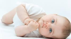 Efek Samping Propolis Goodfit Untuk Bayi AMANKAH?  Efek samping propolis untuk bayi baru lahir sekalipun boleh dibilang tidak ada, karena propolis bersifat herbal, murni dari alam tanpa campuran bahan kimia. Propolis adalah obat alami dengan daya sembuh luar biasa untuk hampir semua jenis penyakit.   Selengkapnya : http://propolisgoodfituntukbayi.blogspot.com/2015/06/efek-samping-propolis-goodfit-untuk-bayi-amankah.html