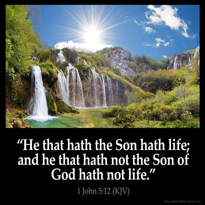 bible quotes about life - photo #6