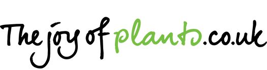 Flower Council Holland brings you - The Joy of Plants
