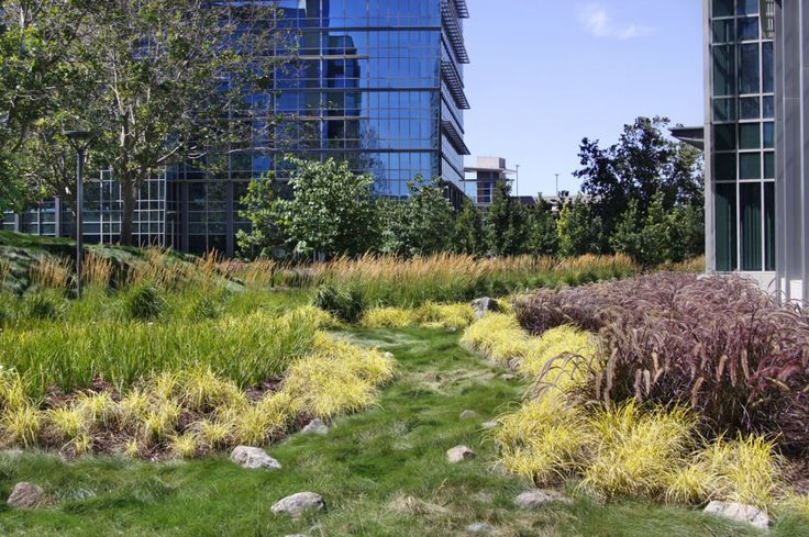 Best 25 Commercial Landscaping Ideas On Pinterest Patio