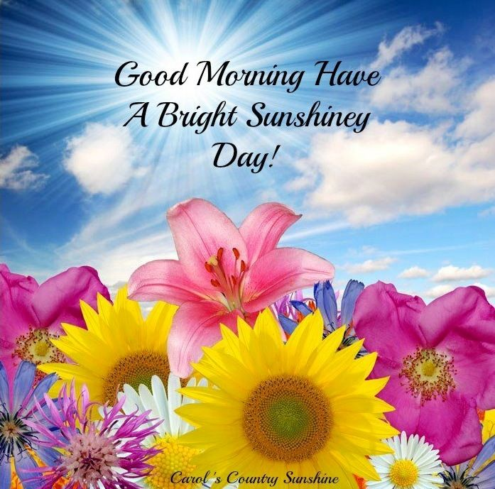 Good Morning Sunshine Have A Beautiful Day : Good morning via carol s country sunshine on facebook