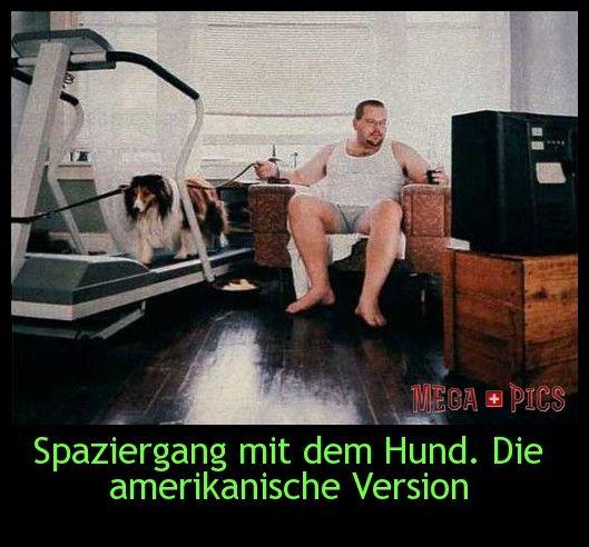 Spaziergang mit dem Hund. Die amerikanische Version - www.MegaPics.ch. Lustige Bilder, witzige Pics, fun Clips, fail Videos.