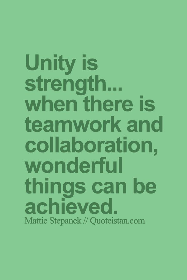 English essay help unity is strength