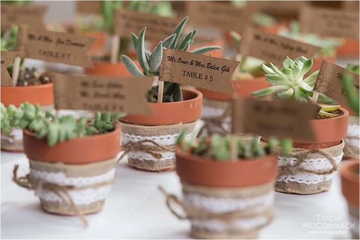 Handmade wedding favors- natural wedding favors- succulents- wedding favors- DIY wedding-Tugce & Stephen's Crissey Farm Wedding - Tricia McCormack Photography