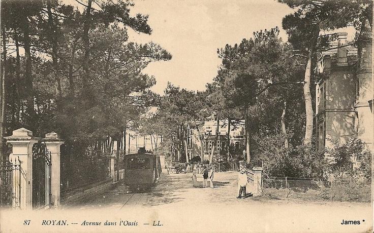 Tramway de Royan   Avenue dans l'Oasis