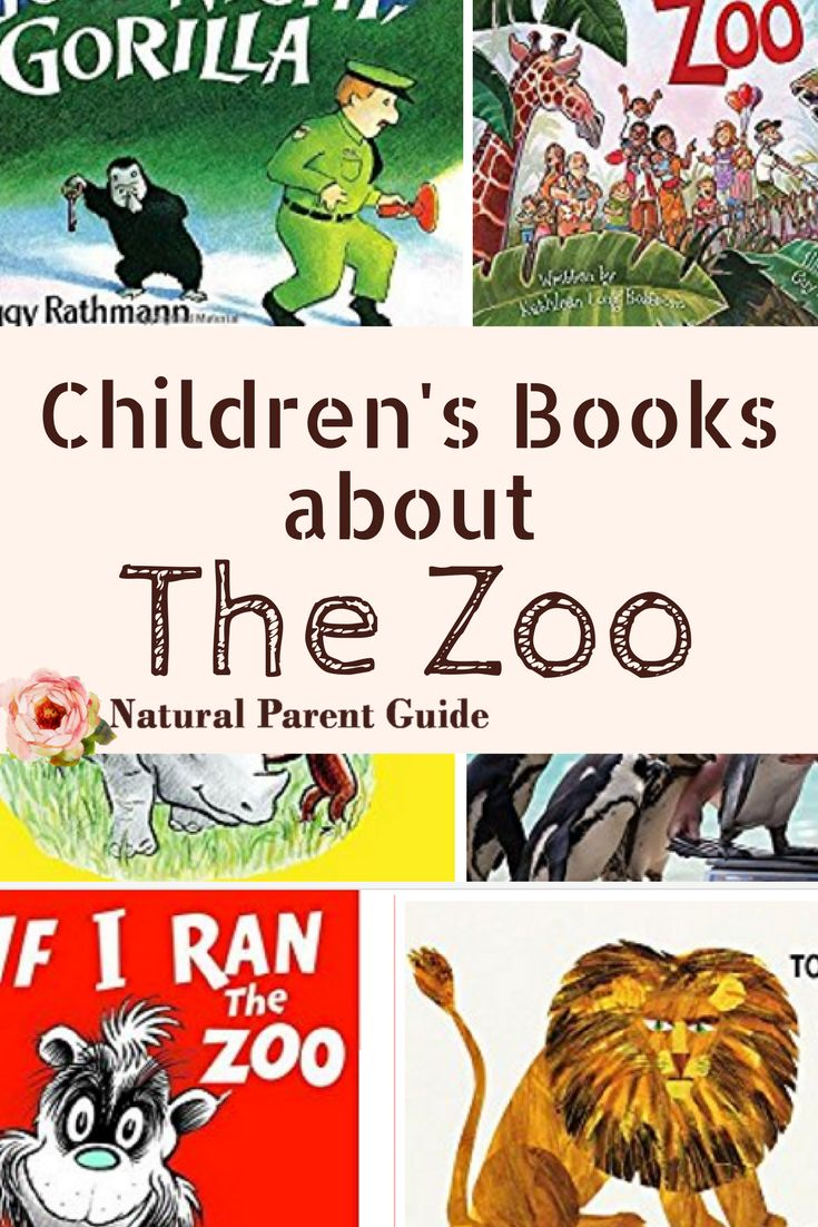 Books for kids about the zoo #wtrw | kids books | Childrens books | What to Read | zoo books | picture books | bedtime stories |