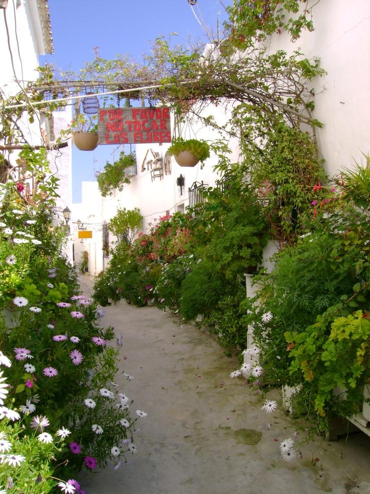 A flower-filled street in Vejer de la Frontera, Cádiz, Spain.